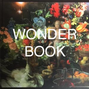 Wonder in Contemporary Art Practice