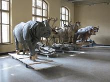 Berlin Museum