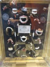 False teeth display
